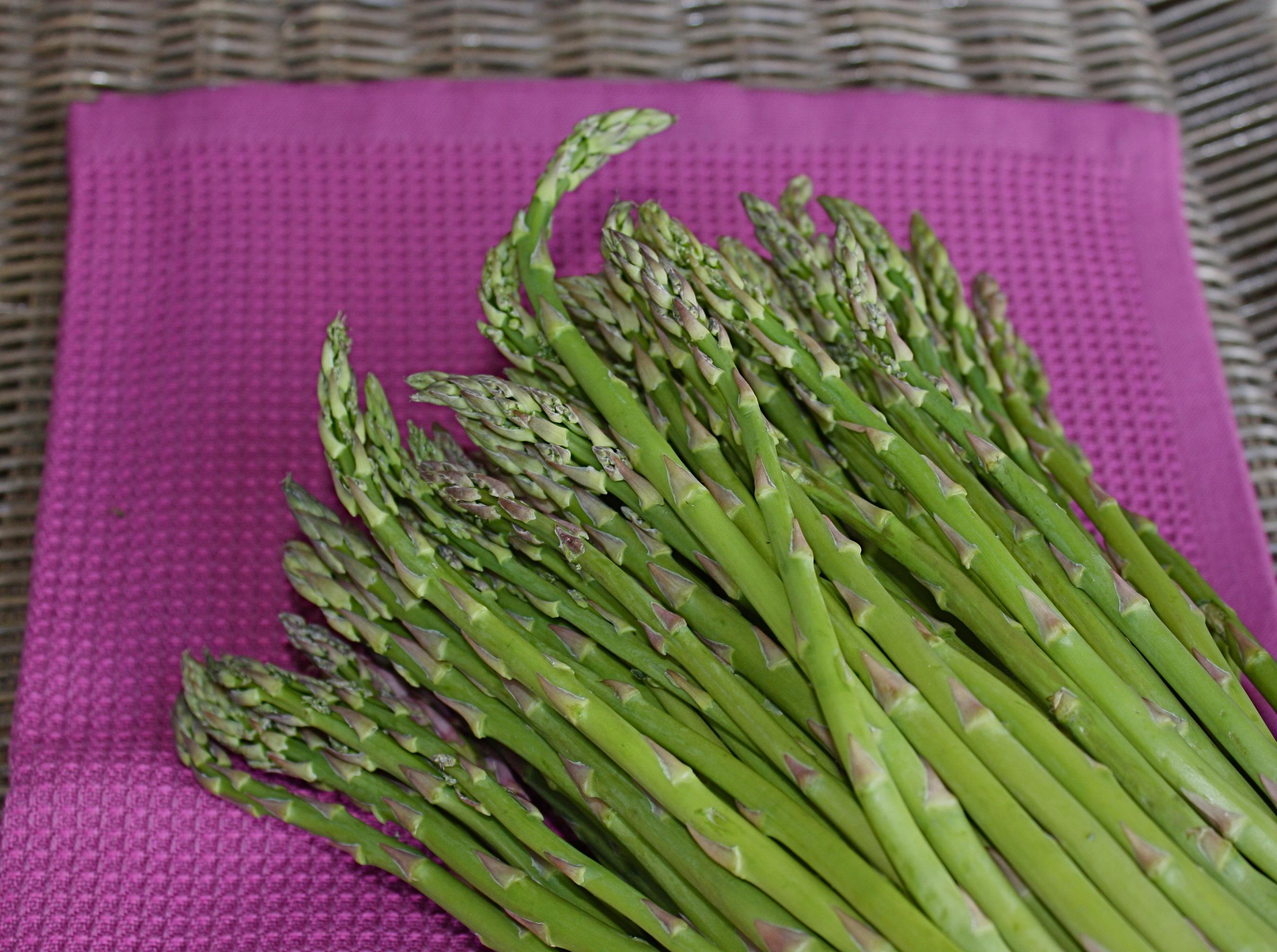 ... Mouthful : Cream of Asparagus Soup (Crème D'asperges if you're